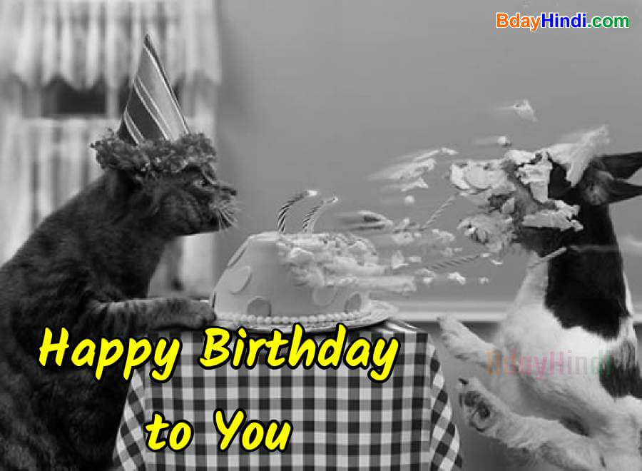 Funny Birthday Wishes Images 2